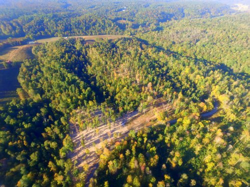 65 Acre Hunting Tract : Primm Springs : Hickman County : Tennessee