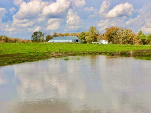 Enjoy Self-sufficient Living On 56 : Summersville : Texas County : Missouri