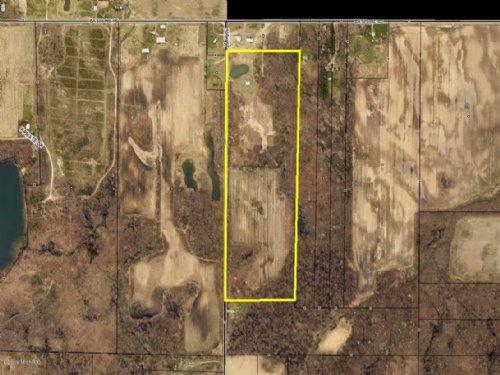 Blueberry Property On 37.7 Acres : Gobles : Van Buren County : Michigan