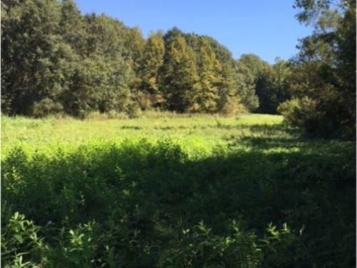147 Acres In Desoto County : Hernando : Desoto County : Mississippi