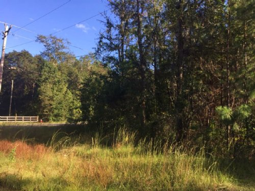 Corner Lot Established Neighborhood : Lake City : Columbia County : Florida