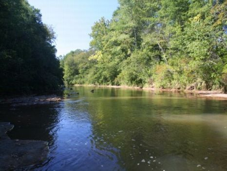 1,833 Acres Reduced : Lumpkin : Stewart County : Georgia