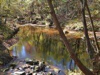 River Run Camp : Meherrin : Lunenburg County : Virginia