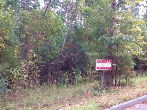 Country Lane Lots : Luverne : Crenshaw County : Alabama