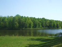 Spring Creek Lake : Keysville : Charlotte County : Virginia