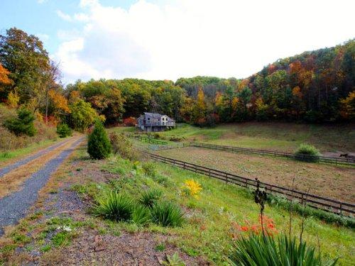 11.8 Acres, Wonderful Equestrian Pr : Elysburg : Northumberland County : Pennsylvania