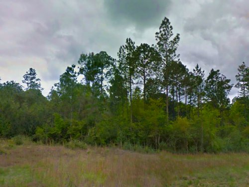 1.25 Acre Lot Near Defuniak Springs : Defuniak Springs : Walton County : Florida