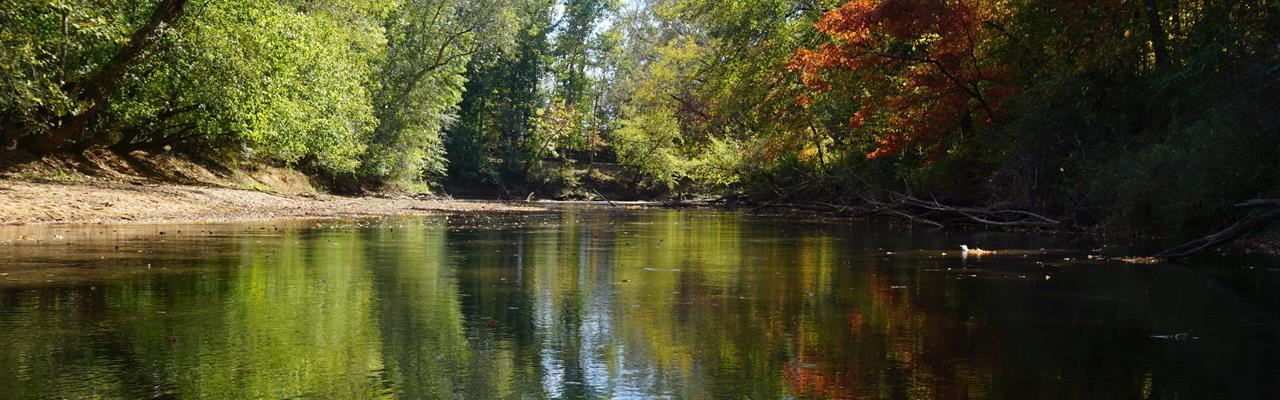 Yellow River Farms : Covington : Newton County : Georgia