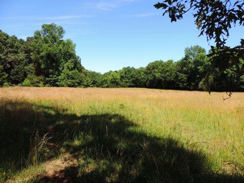 The Gentleman's Farm Tract : Waverly Hall : Harris County : Georgia