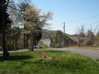Cherokee Lake View Building Lot : Mooresburg : Hawkins County : Tennessee