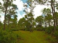 Hunter's Paradise : Okeechobee : Okeechobee County : Florida