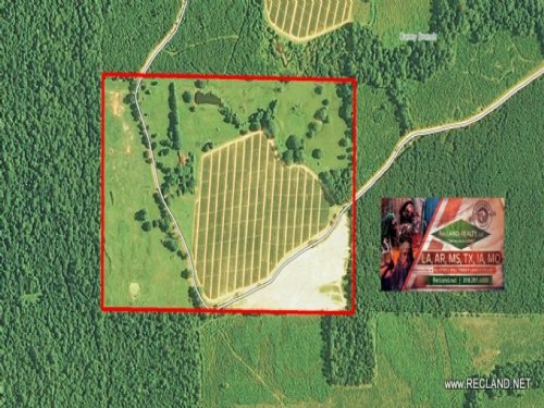 100 Ac Pasture With Home Site Pote : Hermitage : Bradley County : Arkansas