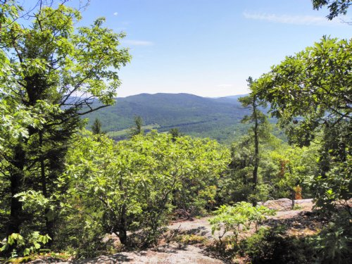 Mount Dimmock Forest : Hanover : Oxford County : Maine