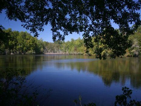 964 Acres Reduced : Lumpkin : Stewart County : Georgia