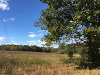45 Acres Nebo Road : Dallas : Paulding County : Georgia