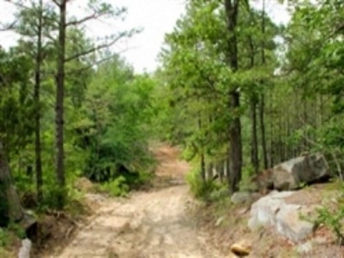 6.72 Acre Trophy Ridge Iii : Clayton : Pushmataha County : Oklahoma