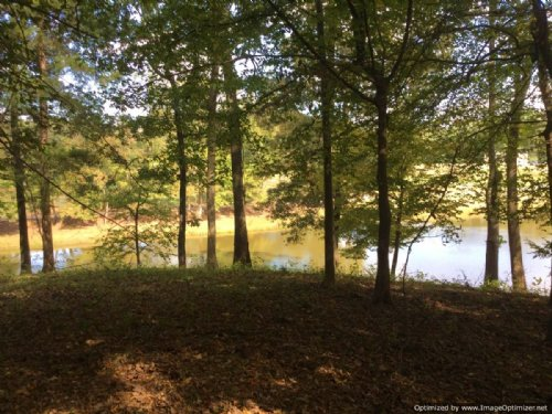 24.3± Ac Recreational Tract : Hernando : DeSoto County : Mississippi