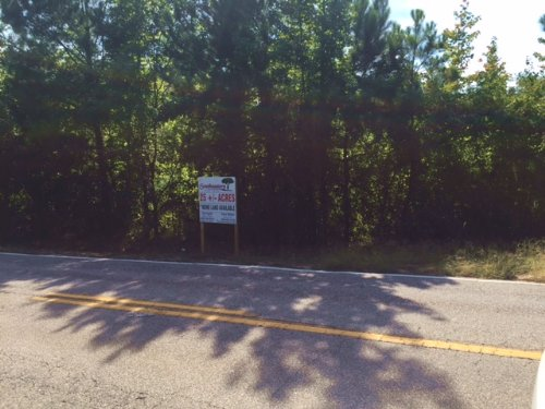 25+/- Ac Near Waverly : Waverly : Lee County : Alabama