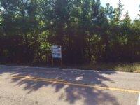 25+/- Ac Near Waverly : Waverly : Lee County : Alabama