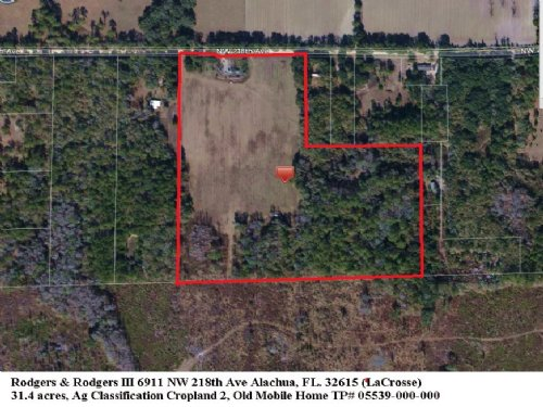 31.4 Acres In Meadow And Woods : Alachua County : Florida