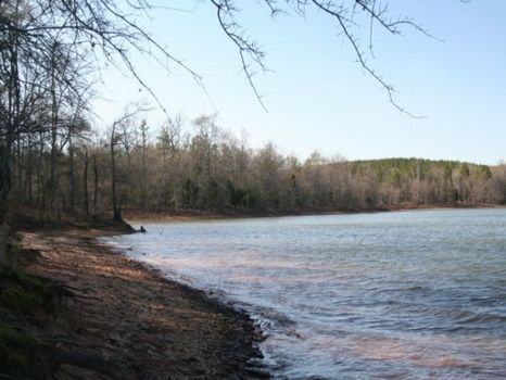 1,374 Acre Lake Russell Tract : Hartwell : Hart County : Georgia