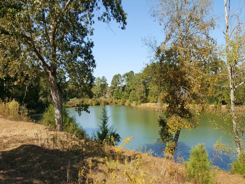 Lake, Creek, Home, Fields, Timber : Weston : Webster County : Georgia