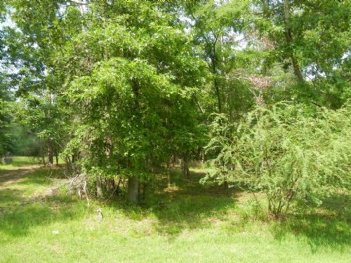 Lovely Gated Community - Cape Royal : Coldspring : San Jacinto County : Texas