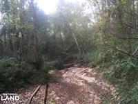 Noland Creek Homesite, Lot 9 : Prattville : Autauga County : Alabama