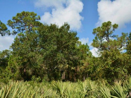Vero Beach 66th Ave : Vero Beach : Indian River County : Florida