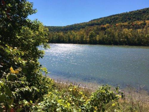 Waterfront Lot On Susquehanna River : Owego : Tioga County : New York