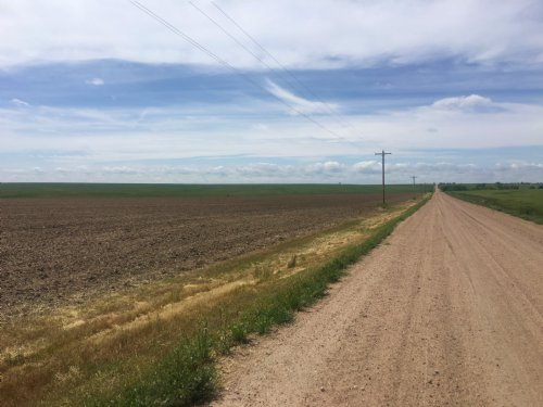 Sherman Co. Grass And Cultivation : Goodland : Sherman County : Kansas
