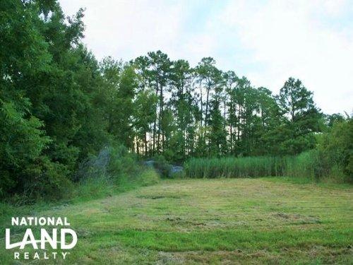 Columbia 69.95 Acre Timber & Huntin : Columbia : Tyrrell County : North Carolina