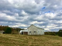 Mini Farm With 3 Bedroom Home : Salesville : Guernsey County : Ohio