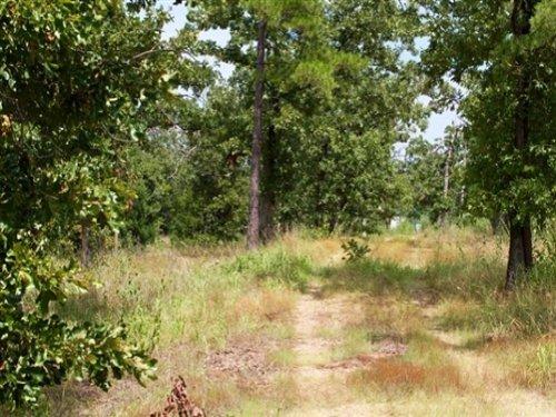 2.71 Acre Lake View Private Reserve : Clayton : Pushmataha County : Oklahoma