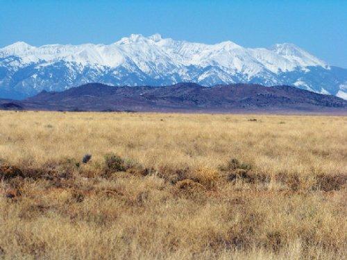 Rio Grande Ranchos Lot (715-179-10) : Rio Grande Ranchos : Costilla County : Colorado
