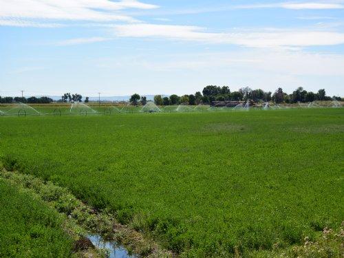 Wyo/Neb Farm : Henry : Scotts Bluff County : Nebraska