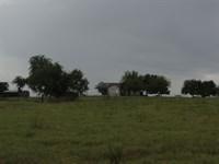 Rio Vista Ranch : Rio Vista : Johnson County : Texas