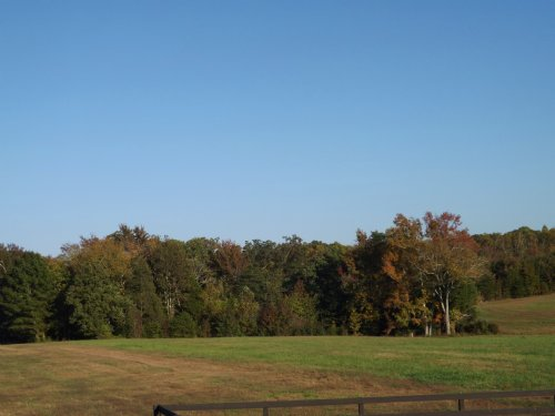 30 Acres - Ideal Equestrian Parcel : Stafford County : Virginia