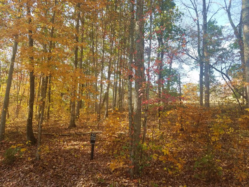 Great Building Lot-Lake Subdivision : New Tazewell : Claiborne County : Tennessee