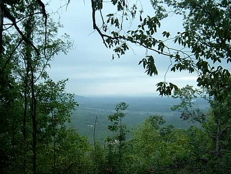 40 Acres Mountain Hunting Land : Borden Springs : Cleburne County : Alabama