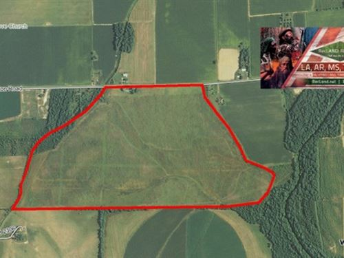 244 Ac - Wrp Tract For Deer & D : Holly Ridge : Richland Parish : Louisiana