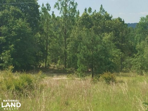 Coy Smith Highway Investment Tract : Citronelle : Mobile County : Alabama