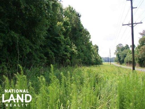 Kinston Recreational Timber And Hun : Kinston : Jones County : North Carolina