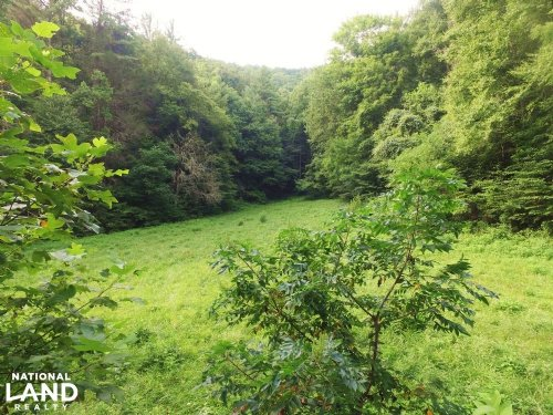 Wooded Hunting & Recreation Propert : Del Rio : Cocke County : Tennessee