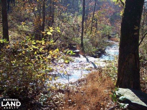 366+/- Acre Deer & Turkey Property : Clinton : Van Buren County : Arkansas
