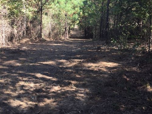 Hinds County Land For Sale : Raymond : Hinds County : Mississippi
