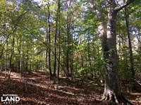 Sharon Hunting Homesite : Sharon : York County : South Carolina