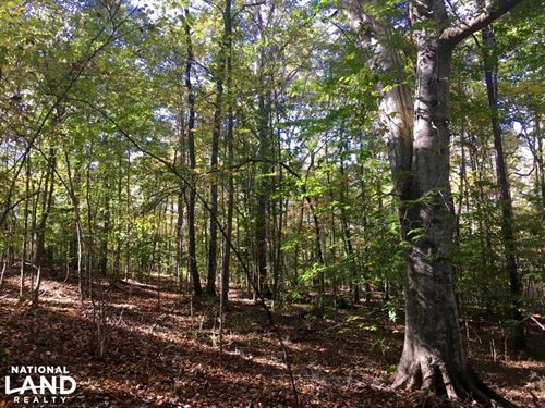 Sharon Hunting Homesite : Sharon : York County : South Carolina
