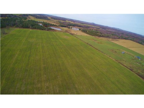Crop Land With Deer And Turkey Hunt : Greenwood : Clark County : Wisconsin