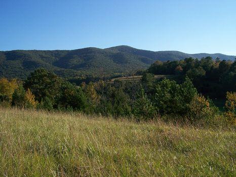 Scenic 60 Acres in Piedmont, AL : Piedmont : Calhoun County : Alabama